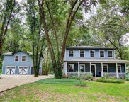 10703 Barefoot Lane, Thonotosassa image