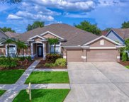 10262 Shadow Branch Drive, Tampa image