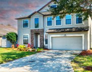 3383 CLASSIC OAK CT, Orange Park image