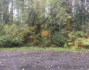 8403 Kingfisher Ct SE, Olympia image
