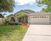 217 Talley Drive, Palm Harbor image
