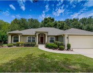 10604 Cedar Forest Circle, Clermont image