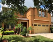11248 Running Pine Dr, Riverview image