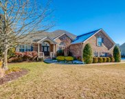 1250 Chapmans Retreat Dr, Spring Hill image