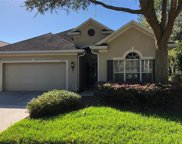 10201 Evergreen Hill Drive, Tampa image