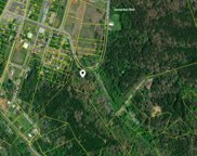 Willowbrook Drive, Tellico Plains image