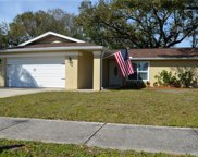 3226 Coventry  N, Safety Harbor image
