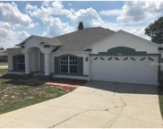 226 Strawflower Court, Deltona image