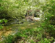 Lot 7 Old Birds Creek Rd, Sevierville image