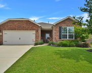 8134 Harlow Lane, Frisco image