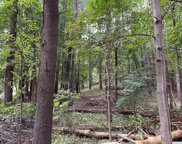 Pine Tree Road, Livingston image
