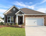 133 Laurel Hill Place, Murrells Inlet image