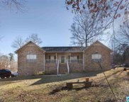 770 Red Valley Rd, Remlap image
