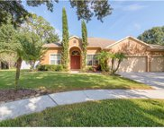 10720 Moss Island Drive, Riverview image