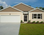 245 Forestbrook Cove Circle, Myrtle Beach image