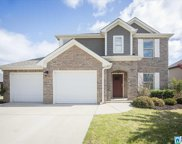 12611 Downing Dr, Lakeview image