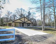 33347 Percy Young Rd, Walker image