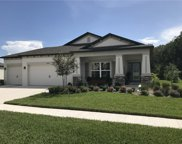 18650 Malinche Loop, Spring Hill image