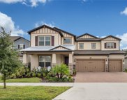 18781 Birchwood Groves Drive, Lutz image