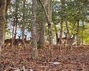 LOT13 Fox Crossing, Blairsville image
