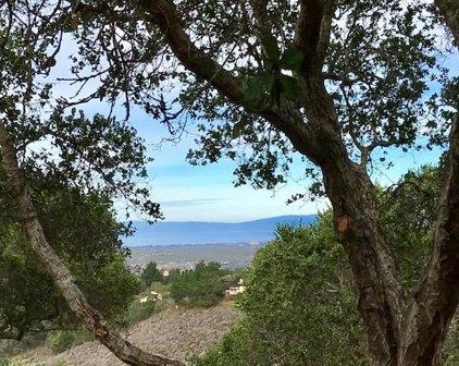 25900 Enclave Ct, Monterey