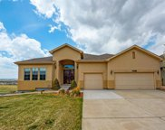 12167 South Shady Pine Court, Parker image