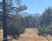623 N Double A Ranch Road, Williams image