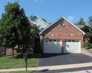 14119 Woods Mill Cove  Drive, Chesterfield image