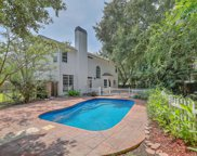 737 Ginglis Way, Mount Pleasant image
