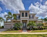733 Manns Harbor Drive, Apollo Beach image