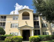 18185 Sterling Gate Circle Unit 18185, Tampa image