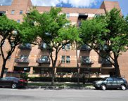1000 East 53Rd Street Unit 117, Chicago image