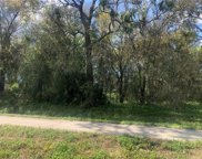 Us Highway 301, Riverview image