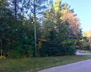 3879 Douglas Court Unit Lot#31, Harbor Springs image