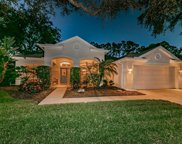 3669 Siena Lane, Palm Harbor image