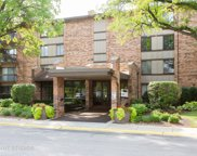301 Lake Hinsdale Drive Unit 304, Willowbrook image