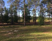 24124 Deep Springs Loop, Eustis image