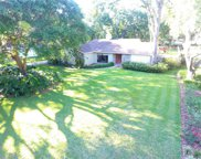 2302 Andre Drive, Lutz image