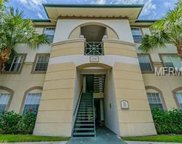 17102 Carrington Park Drive Unit 317, Tampa image