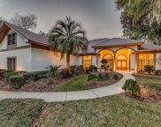 13707 LITTLE HARBOR CT, Jacksonville image