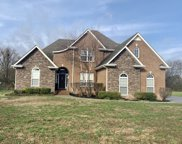 1301 Lewis Downs Dr, Christiana image