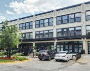 1071 West 15Th Street Unit 256, Chicago image
