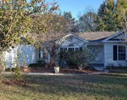 205 Palace Ct., Conway image