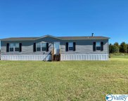 497 Golightly Spring Road, Toney image