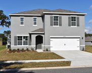 3816 Heartleaf Lane, Mount Dora image