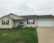 401 Blue Willow, Cape Girardeau image