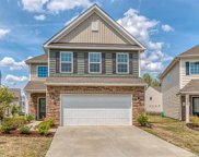 2017  Ice Lake Court, Fort Mill image