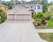 2481 Carnation Court, North Port image