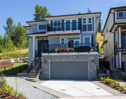 10176 246a Street, Maple Ridge image