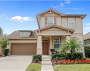 13615 Riggs Way, Windermere image